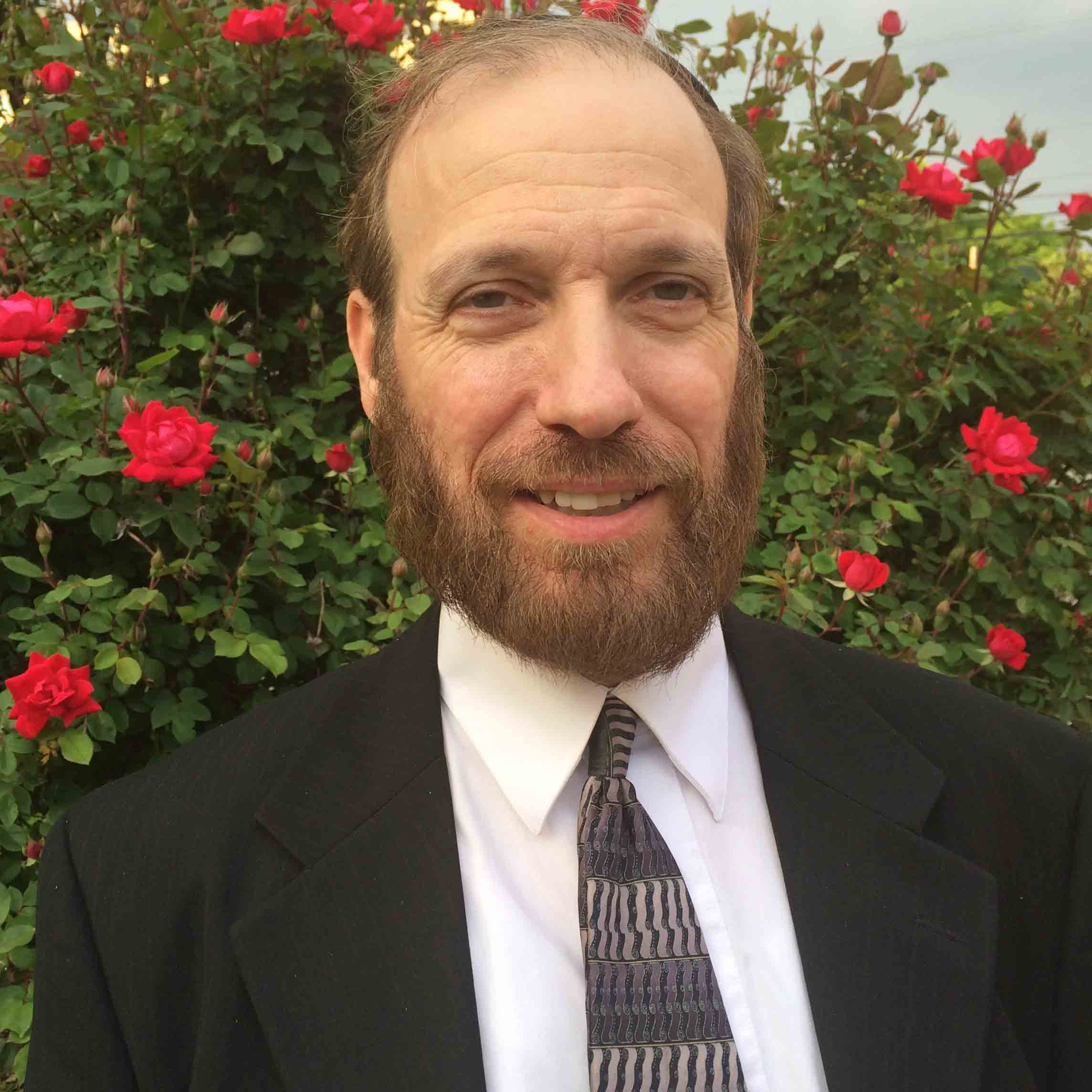 Rabbi David Borenstein